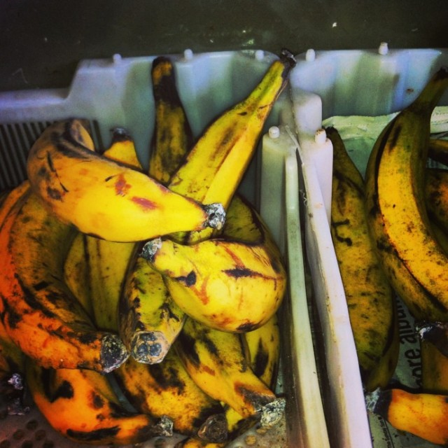 Picking the right Plantain