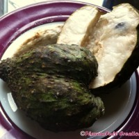 SOURSOP ~ THIRST QUENCHER & CANCER FIGHTER?